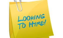 looking for a kotlin developer